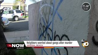 Murder, graffiti stoke gang fears in South Bay - Video