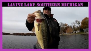 Lavine Lake Michigan Fall Fishing