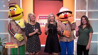 Busch Gardens brings some special guest from Sesame Street - Video
