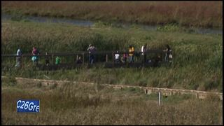 Legislature passes bill allowing utilities to fill wetlands - Video