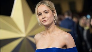 Brie Larson Shares Sweet Moment With Little Girl At 'Captain Marvel' Premiere