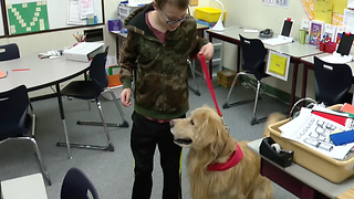 Students learning in new way with help of special assistants - Video