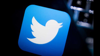 Twitter has suspended a series of fake accounts