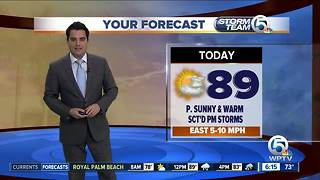 South Florida weather 6/16/18 - Video