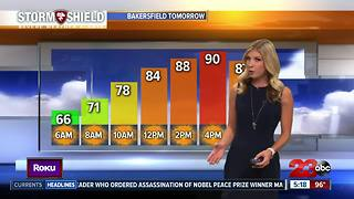 A perfect Father's Day forecast! - Video