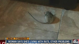 Woman says she's living with rats and other problems - Video