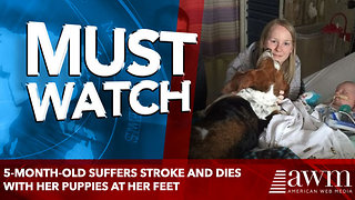She died with her puppies at her feet - Video