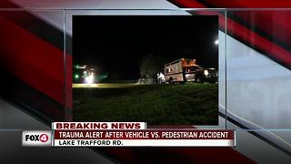 Car hits pedestrian in Immokalee - Video