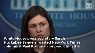 Sarah Huckabee Sanders Unloads on NYT Writer - Video
