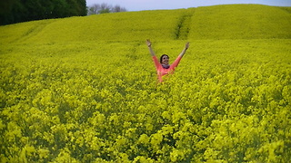 💜❤💜Amazing yellow rapeseed fields, birds, rabbits, flowers and bees. 💜❤💜