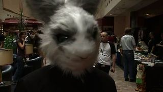 Furry Convention - Video