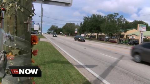 New push to make Busch Boulevard safer following several pedestrian and bicycle crashes