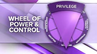 Wheel of Power and Control: Minimizing Concern and Blame - Video