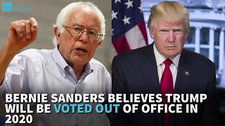 Bernie Sanders Believes Trump Will Be Voted Out Of Office In 2020 - Video