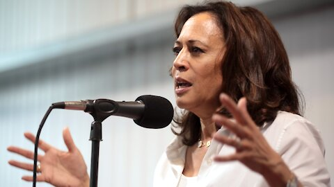 With Kamala Out, Libs Angered by Whiteness of Dem Field