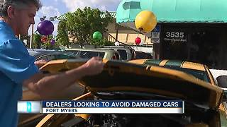 Dealers looking to avoid damaged cars - Video