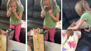 Little girl breaks down in tears when surprised with a kitten for her birthday - Video