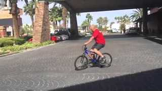 Dog Trainers Take Backwards Bike Challenge - Video