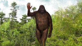 """Mr. Howdy""- The Waving Bigfoot Encounters  - Video"