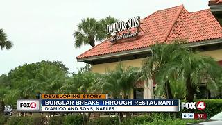 Burglar breaks through wall to enter Naples restaurant - Video