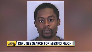 Manatee County deputies ask public to be on the lookout for missing, armed felon - Video
