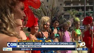 Hats & horses center of attention on opening day - Video