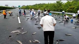 Drivers go fishing on Chinese highway