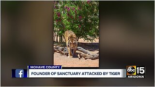 Founder of Sanctuary attacked by tiger