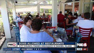 Sanibel city council passes ordinance to allow dogs at restaurants