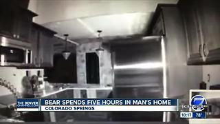 Bear breaks into house as owner sleeps, forages for 6 hours - Video
