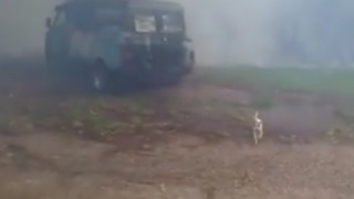 Dog Gets Soaked as Helicopter Drops Water on Burning Van During Russell Island Fire - Video