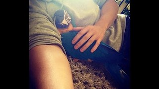 Playful Parrots Demand Cuddles - Video