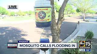 Neighborhoods having a hard time with mosquitoes during the monsoon - Video
