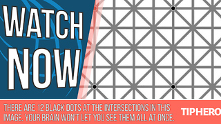 The Internet Is Buzzing Over This Optical Illusion - Video