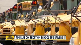 Pinellas Schools looking to hire 100 bus drivers - Video