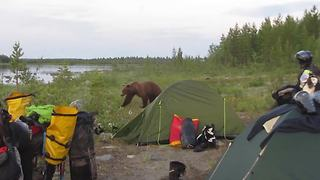 Bear gets too close for comfort for these campers - Video