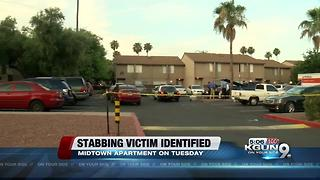 Police identify victim in deadly stabbing - Video