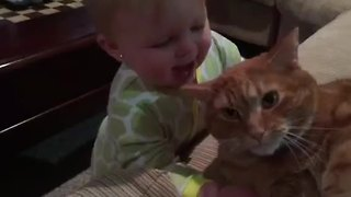 Baby loves her cat so much she tries to eat him! - Video