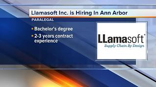 Workers Wanted: Llamasoft Inc. is hiring in Ann Arbor - Video