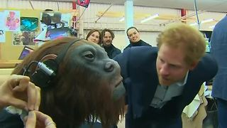 Star Wars welcomes the Royals - Video