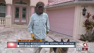 Man says Mosquitoes are keeping him hostage - Video