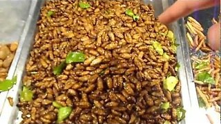 Thai Food Market Sells Edible Bugs to Tourists - Video