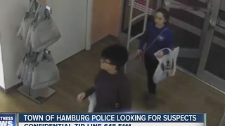 Hamburg Police need help identifying suspected thieves - Video
