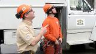 Hiring An Arborist - Video