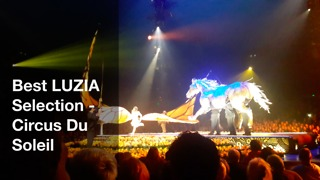 Best LUZIA Selection from  Circus De Sole  - Video