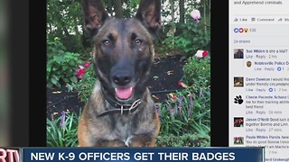 New K-9 officers get their badges - Video