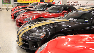 World's Largest Dodge Viper Collection - Video