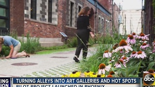 Turning alleys into art galleries in Phoenix - Video
