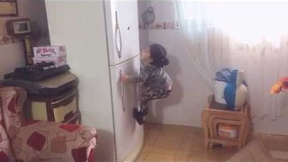 Toddler Proves That Everything Can Be Climbed - Video