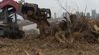 Trees Removed From Nashville's Fort Negley - Video